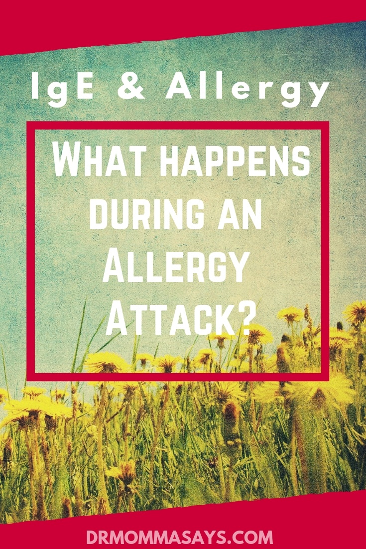 Dr. Burton shares insightful information about IgE and allergy which is important for understanding the process that occurs in an allergic reaction.